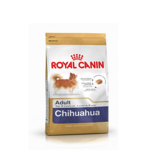 Chihuahua Adult 1.5kg, Paws & Claws Pets