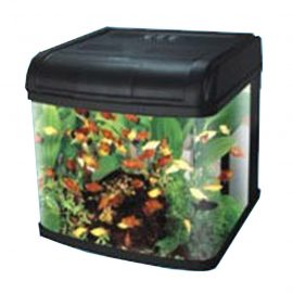 Compact Aquarium - Dream fish tank