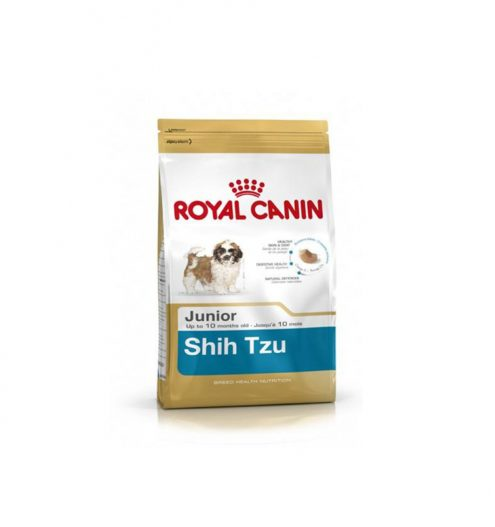 Shih Tzu Junior 1.5kg, Paws & Claws Pets