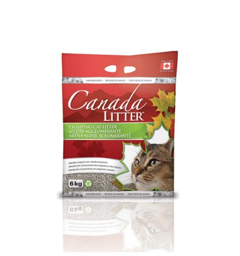 canada litter clumping cat litter super absorbant