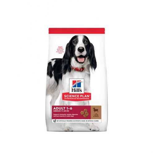 Hill's Medium Adult Dog with Lamb & Rice, Paws & Claws Pets