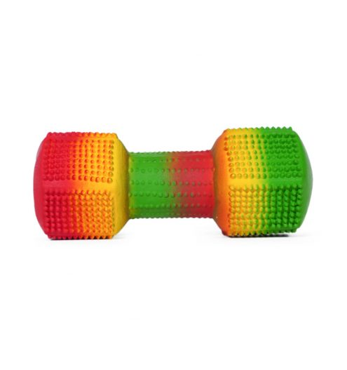 Rubber Dumbbell Dog Toy, Paws & Claws Pets