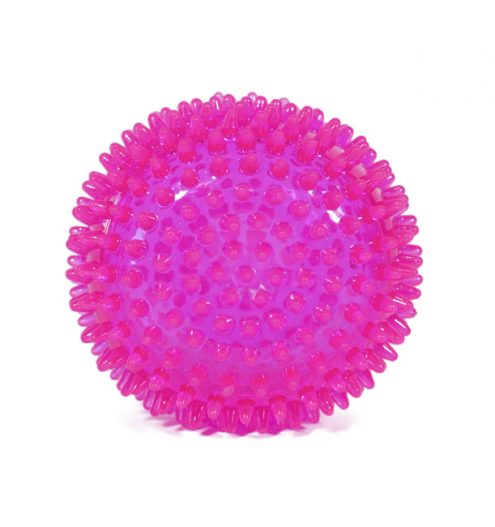Super Spiky Dog Ball Toy, Paws & Claws Pets