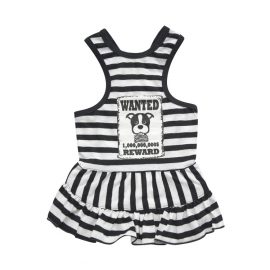 Criminally Cute Dog Outfit