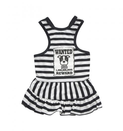 Wanted Girl Dog Outfit, Paws & Claws Pets