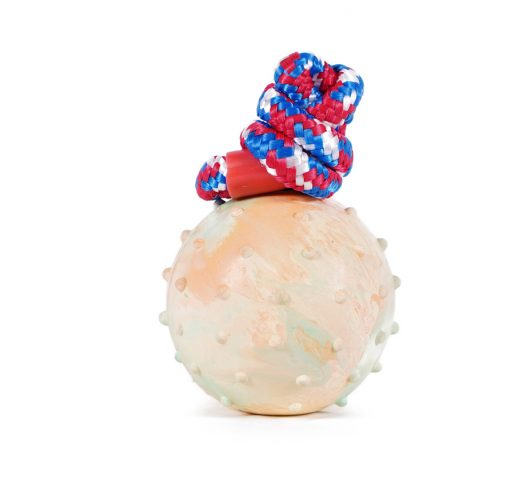 Rubber Ball 'n' Rope Dog Toy, Paws & Claws Pets